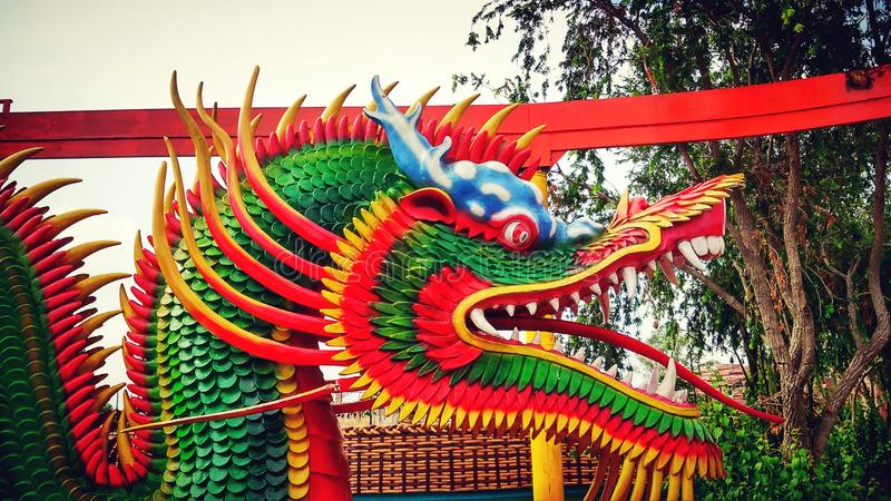 The year of the Dragon royalty free stock photos