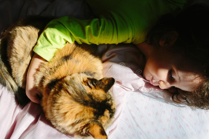 2-year kid hugging a cat on a bed royalty free stock images