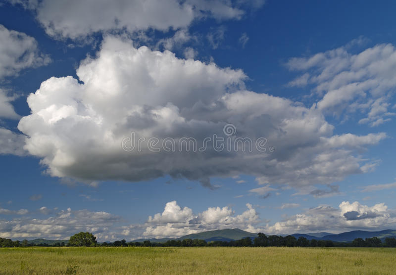Year landscape with meadow and cloudy sky stock photos