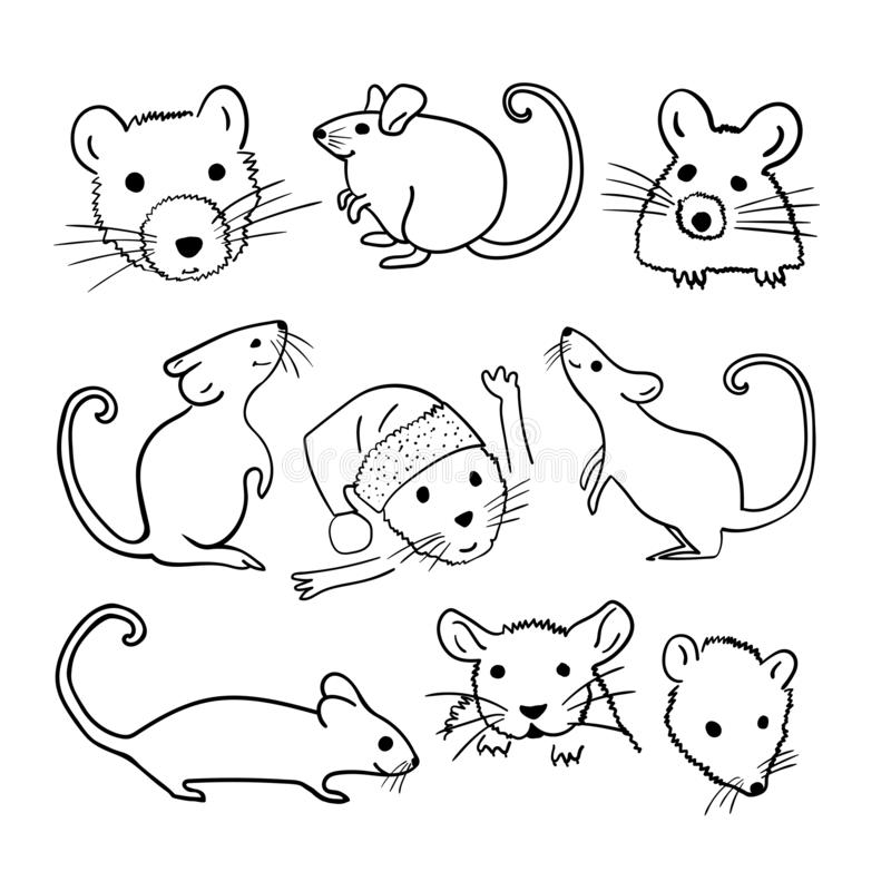 The Year of the Mouse or Rat. Vector set outline hand drawn brush illustration with different animal characters in various poses. royalty free stock images