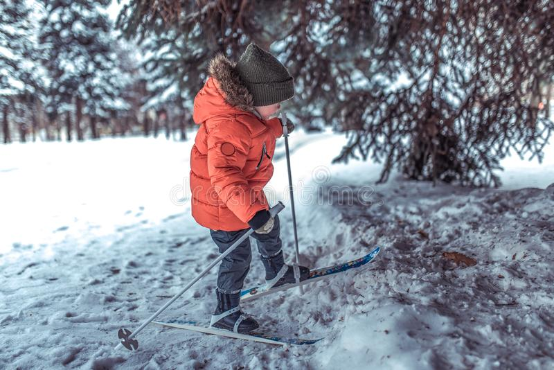 A 3-5 year old boy rides and walks alone on toy toy skis. Winter forest drifts and wood drift on background. The first stock image