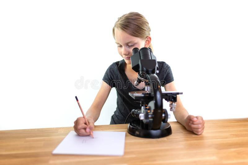 A 9-year-old girl looks into an eyepiece of a microscope and draws her observations on a sheet of paper. Isolated against white b. Ackground royalty free stock images