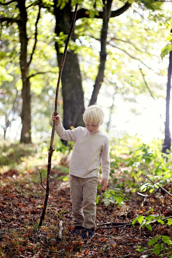 Little Boy with Big Stick Walking in the Woods royalty free stock photography