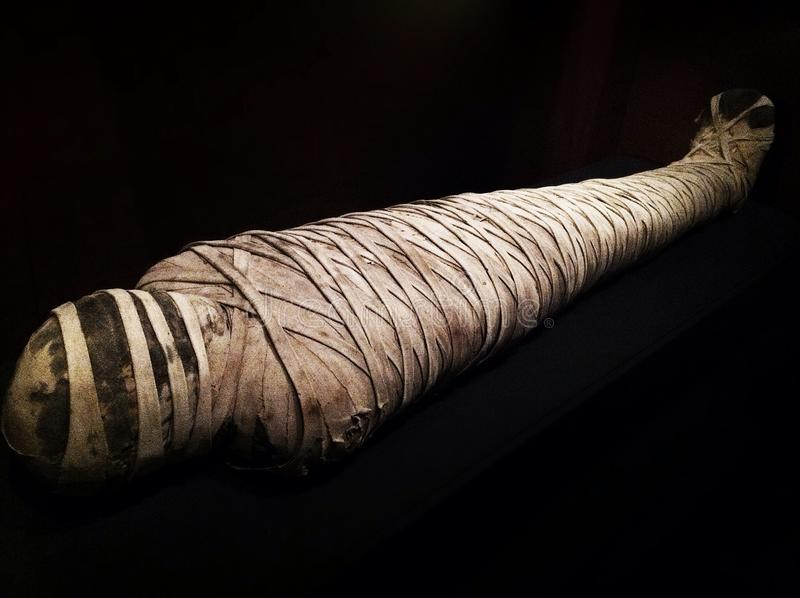 2,500-year-old mamusia, Ka Nelson muzeum sztuki - Kansas City, Missouri fotografia stock