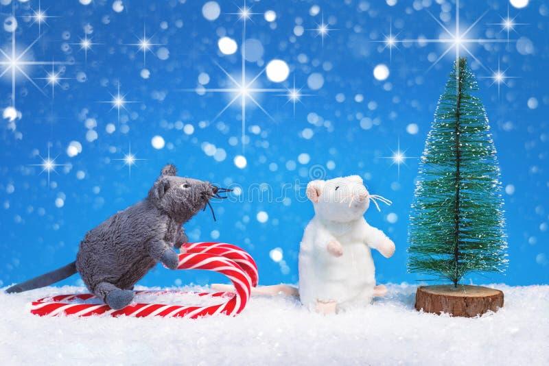 Year of the rat seasonal greeting card royalty free stock images