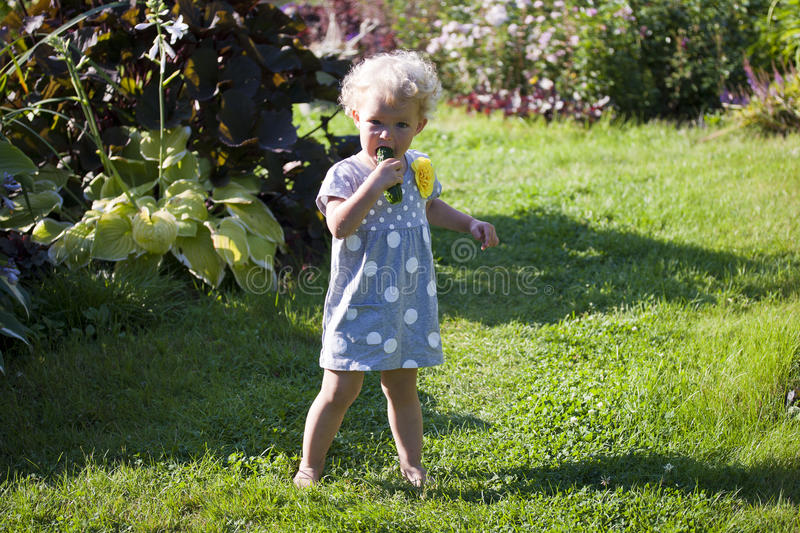 Download 2 Years Baby Girl Eats Cucumbers At Plant Stock Photo - Image of growing, little: 39500022