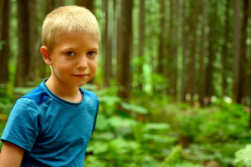 6 years old naughty blonde haired Caucasian boy on his summer holiday in the campground looking into the camera over woody stock photography