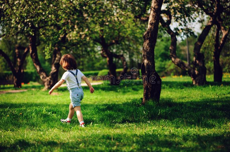 3 years old toddler child boy walking alone in spring or summer walk in garden. Or park royalty free stock image