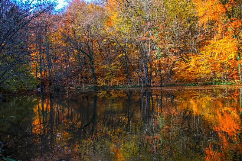 Yedigöller National Park, Autumn. Yedigoller National Park is an oasis for urban folk, who are often shocked by its beauty when witnessing the seven small royalty free stock photography