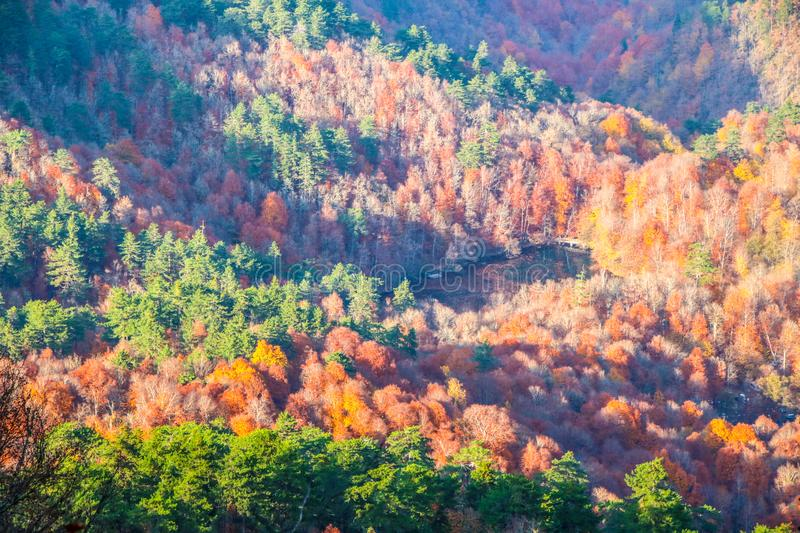Yedigöller National Park, Autumn. Yedigoller National Park is an oasis for urban folk, who are often shocked by its beauty when witnessing the seven small stock photo