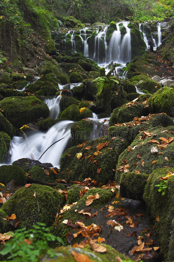 Download Yedigoller för falls iii fotografering för bildbyråer. Bild av kaskad - 37609