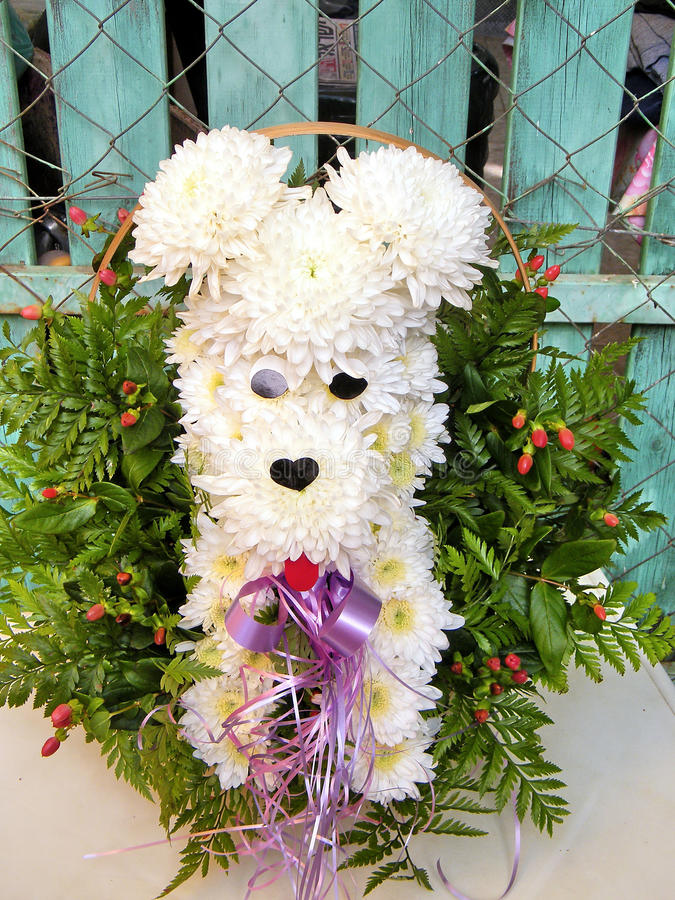 Or Yehuda The Chrysanthemum Dog Bouquet 2010 Stock Image - Image of ...