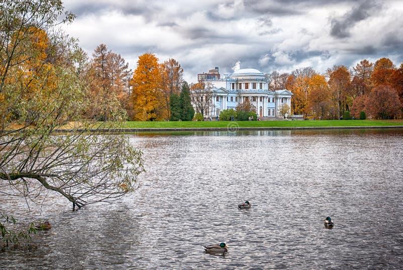 Yelagin宫殿和海岛在圣彼德堡 俄国 免版税图库摄影