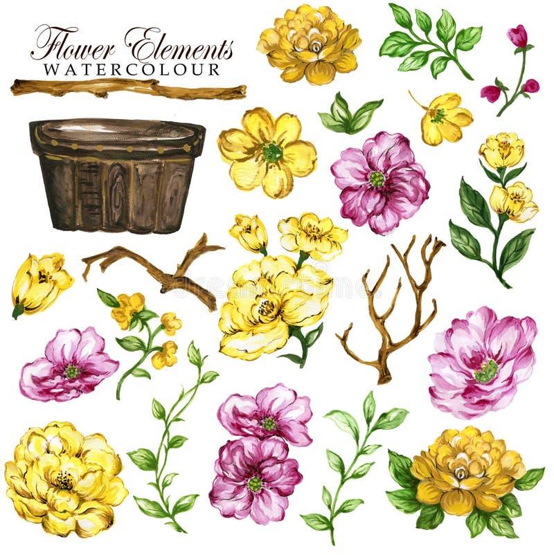 Yelllow floral y rosa del elemento pintado a mano ilustración del vector