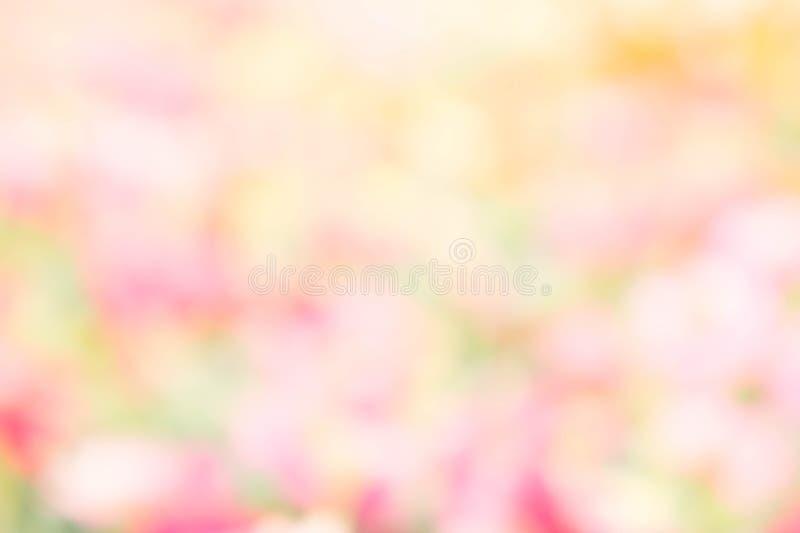 Yello coloré de vert de rose de couleur de fond de tache floue de nature abstraite images stock