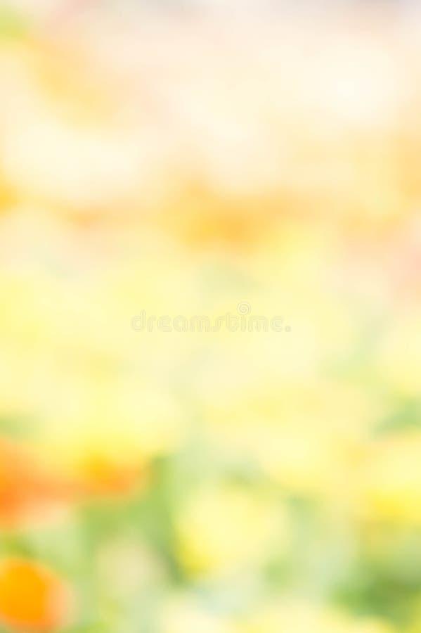 yello extérieur de fond de style de tache floue de couleur de fleur abstraite de nature photos libres de droits