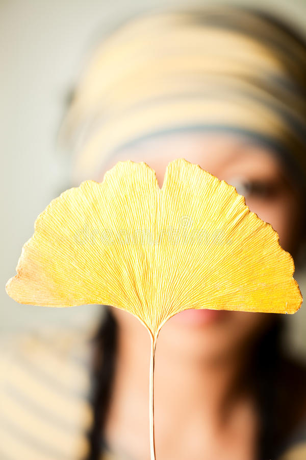 Yellow Royalty Free Stock Photography