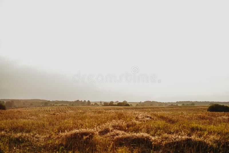 Yellow agriculture field village panorama landscape. Beautiful Nature Landscape stock photo