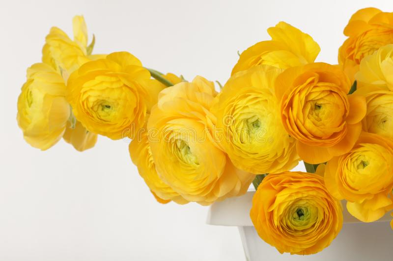 Yellow Anemone Flower Bouquet Stock Image - Image of detail, color ...
