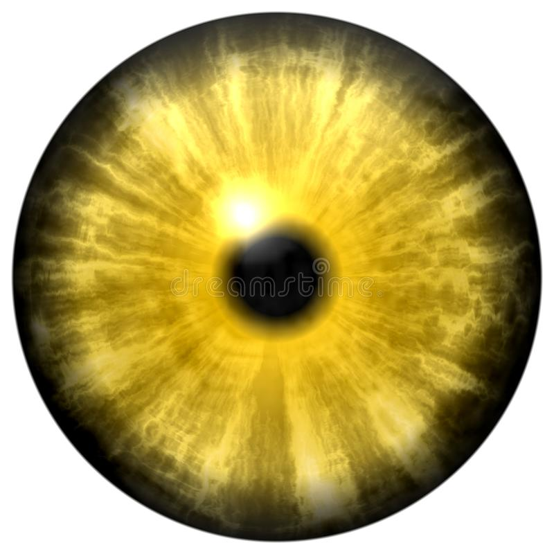 Yellow animal eye with small pupil and black retina. Dark colorful iris around pupil, detail of eye bulb. Yellow animal eye with small pupil and black retina in vector illustration