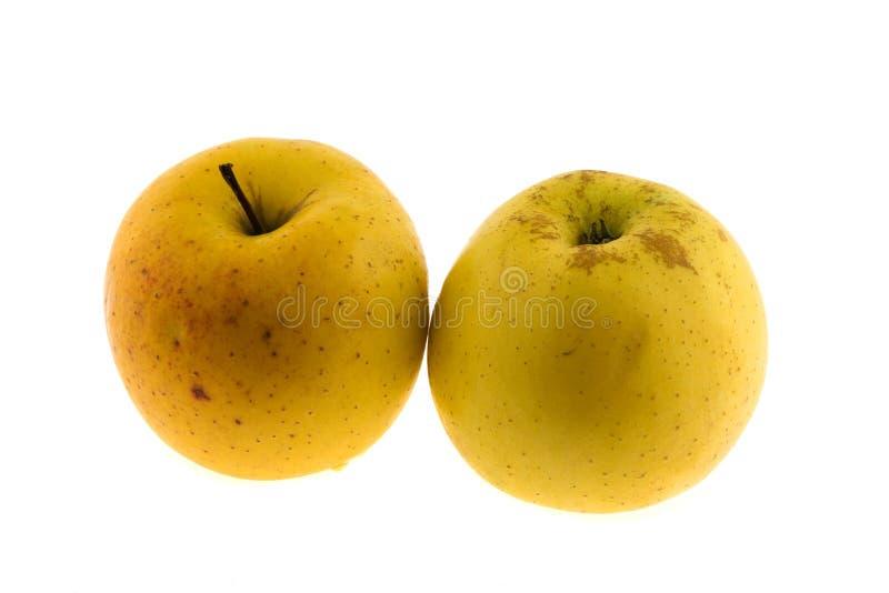 Yellow apple royalty free stock photo