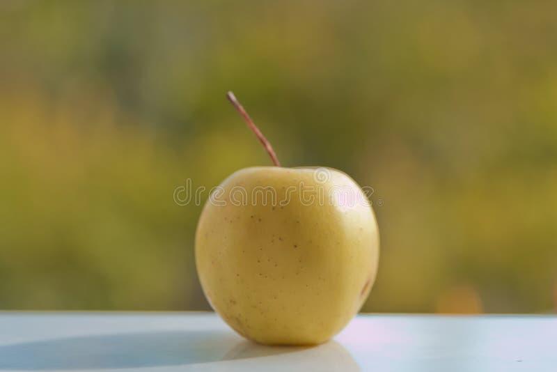 Yellow apple green background stock photo