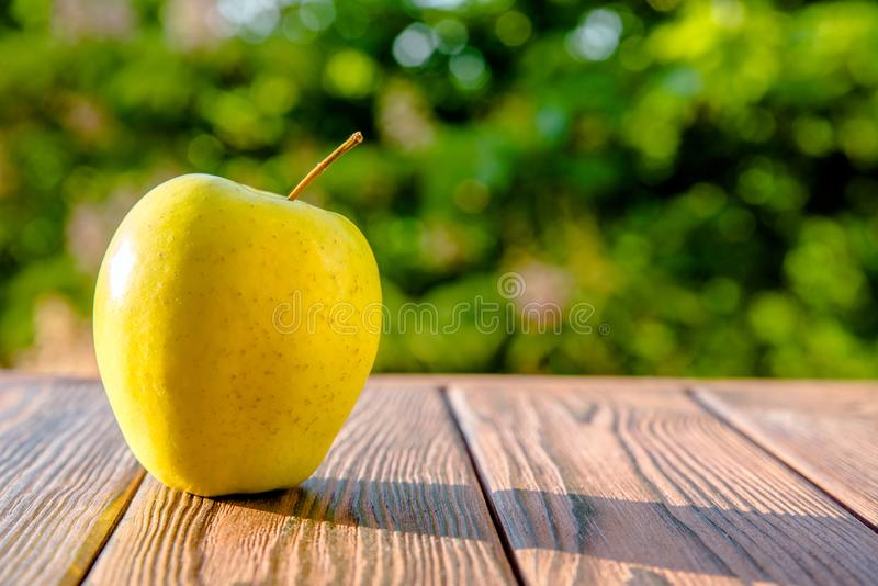 Yellow Apple lies royalty free stock photo