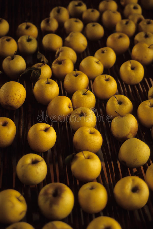 Download Yellow Apples stock photo. Image of shelf, many, golden - 21650248