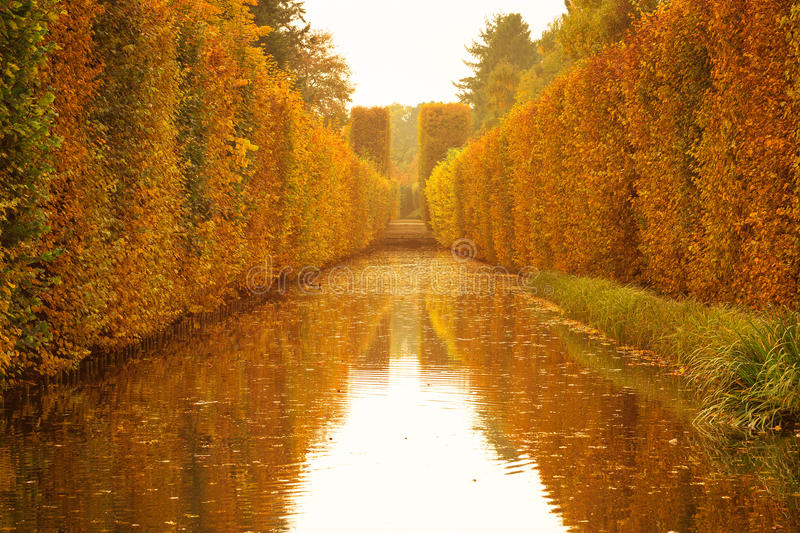 Download Yellow autumnal park stock photo. Image of bright, autumnal - 34477418