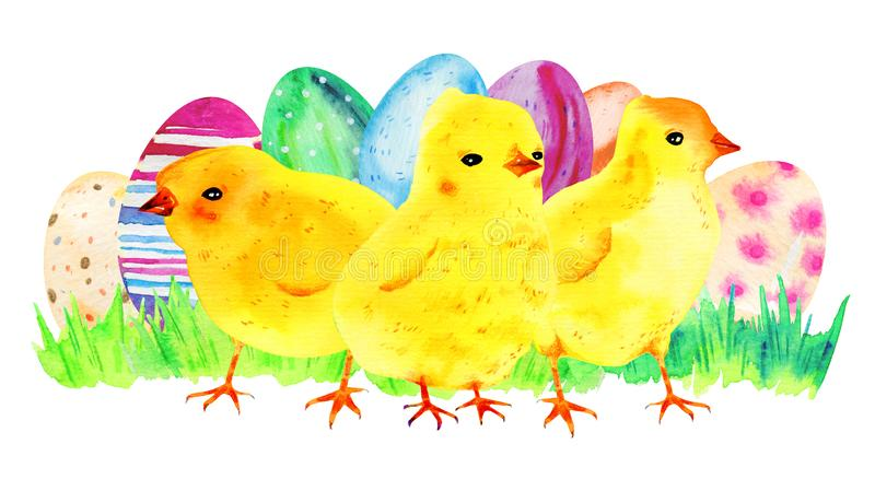 Yellow baby chickens with painted easter eggs and grass. Hand drawn watercolor cartoon sketch illustration vector illustration