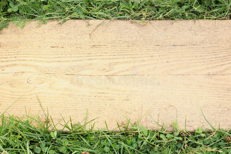Download Yellow background stock image. Image of grass, close - 32371521