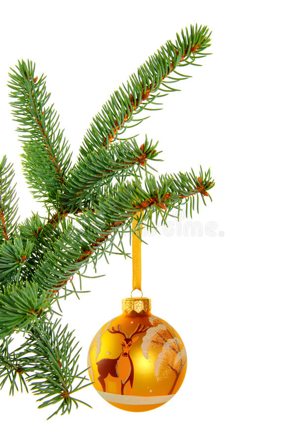 Yellow ball with images of deer. Golden yellow Christmas ball with images of deer and snow covered tree hanging on fir branch. Isolated on a white background royalty free stock image