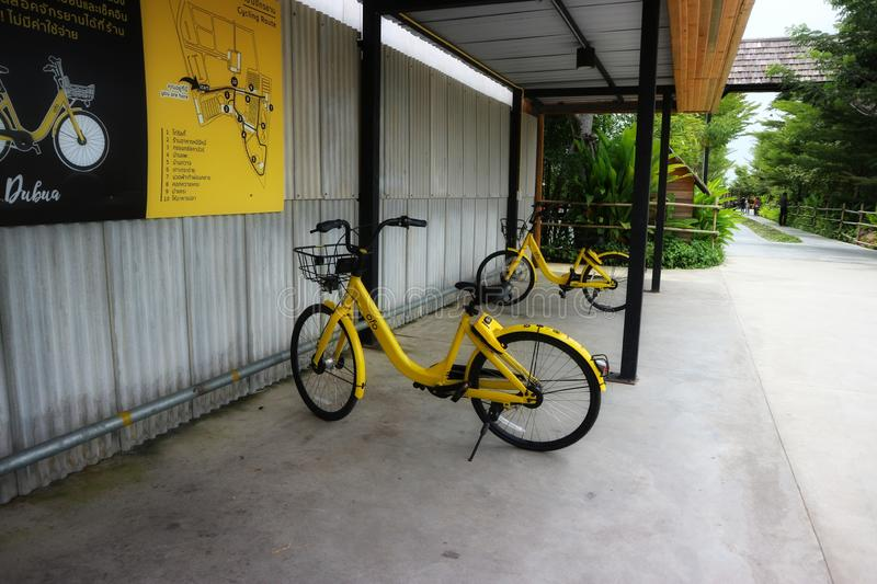 Yellow bicycles in public parking lots for exercise. Outdoor stock photos