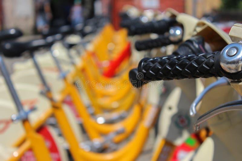 Yellow bicycles royalty free stock photos