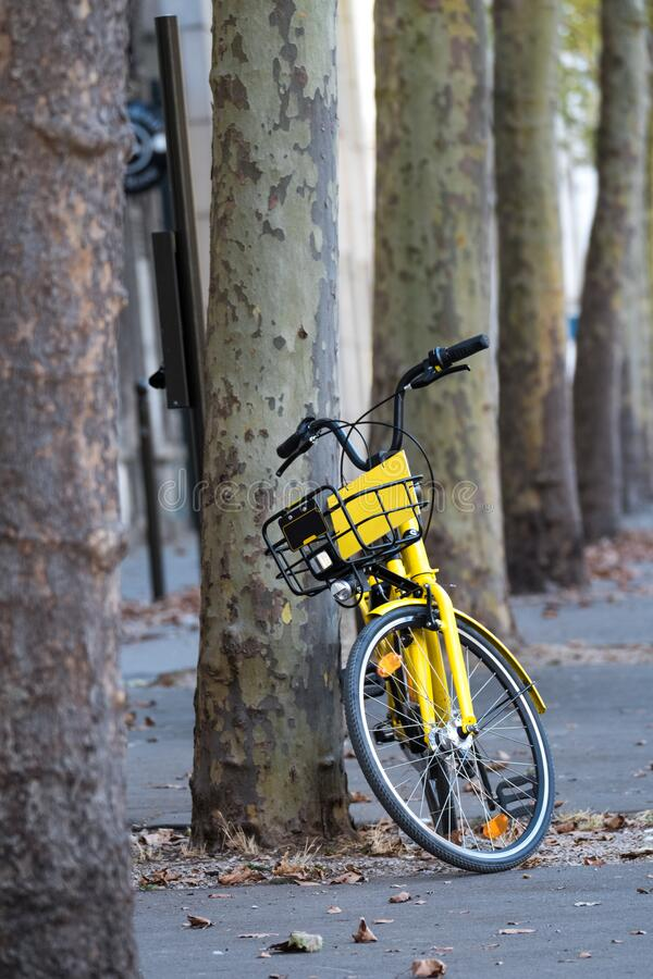 Yellow bike for hire leaning against tree stock photos