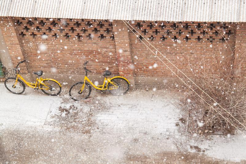 Yellow bikes stand near the brick wall in winter on the snow . stock images