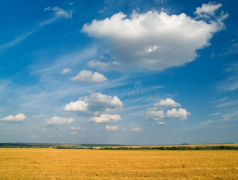 Yellow and blue landscape stock photos