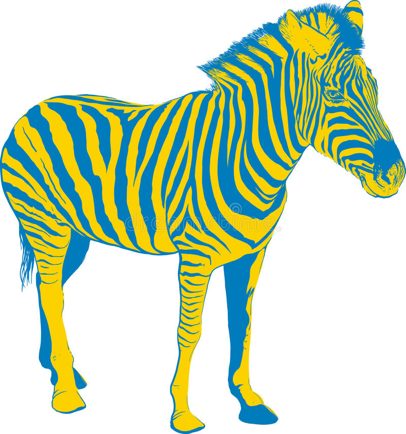 Yellow Blue Zebra vector illustration