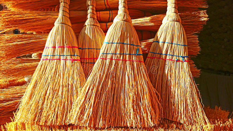 Yellow brooms stock image