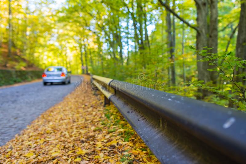 Yellow, brown , green beech wood leaves near a cobblestone road, passing car , focus on the leaves. At autumn stock images
