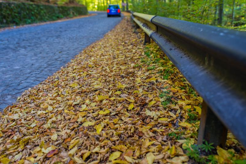 Yellow, brown , green beech wood leaves near a cobblestone road, passing car , focus on the parapet. At autumn stock photography