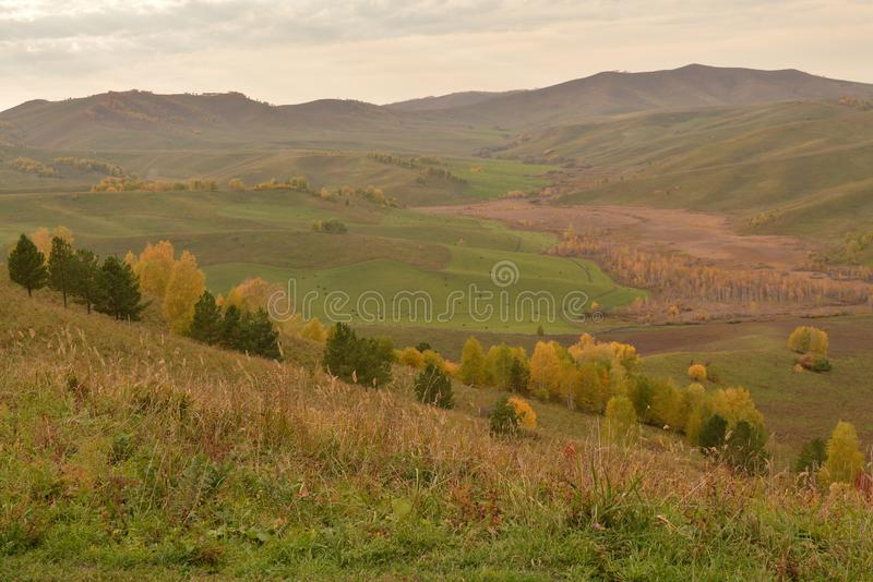 Yellow brown green valley bright autumn Russia. Forest yellow green valley bright autumn park Russia view of the valley hills horison stock image