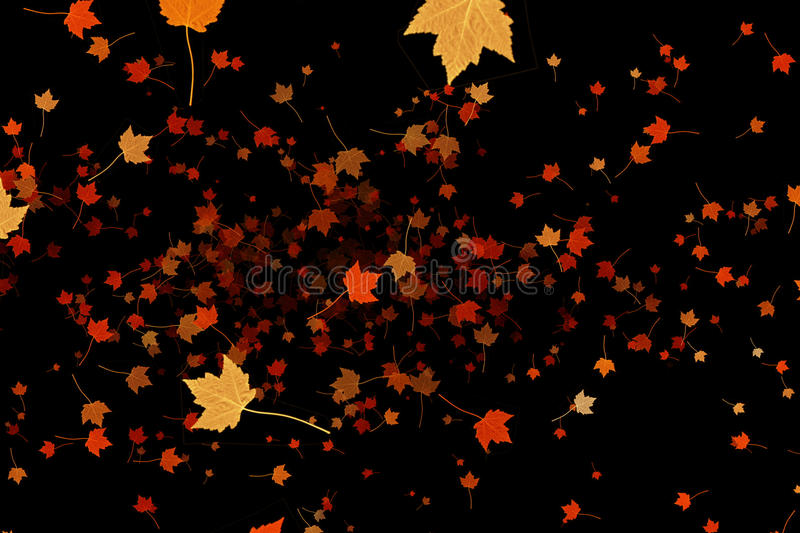 Yellow, brown, red colorful leaves autumn colors flying on black background, leaf fall season stock images
