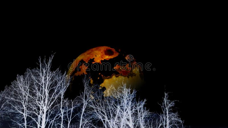 Yellow burning planet on cloudy black sky appearing behind white forest  silhouettes. Bare leafless trees. Full moon, environment protection concept, planets royalty free stock photos