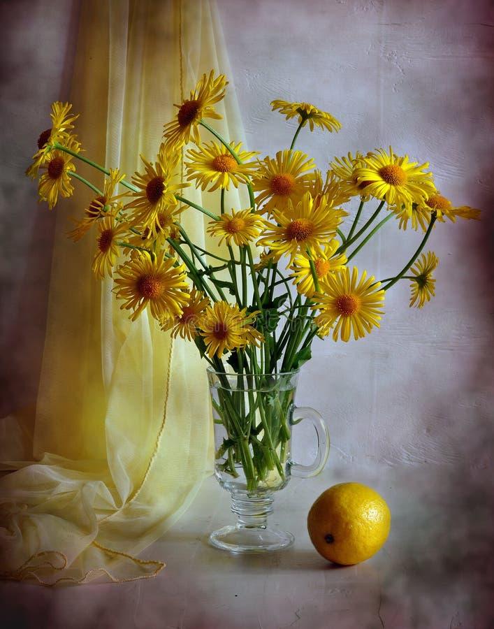 Yellow camomiles and lemon royalty free stock photo