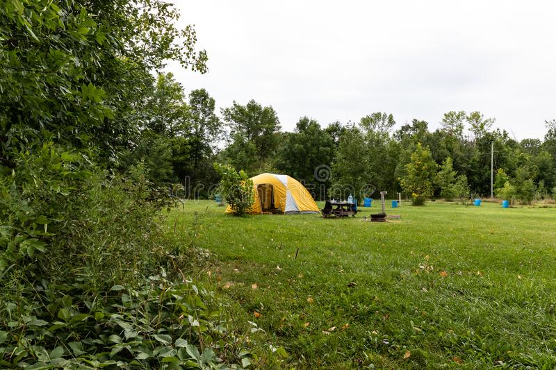 Yellow Camping tent near the forest on grassland royalty free stock photo