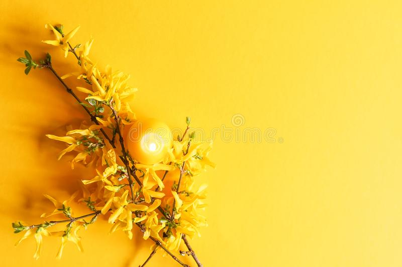 Yellow candle in the shape of egg and beautiful spring forsythia plant branches stock images