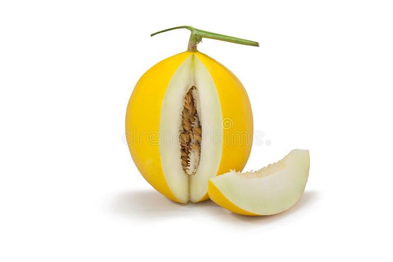 Yellow Cantaloupe melon. On white background royalty free stock images