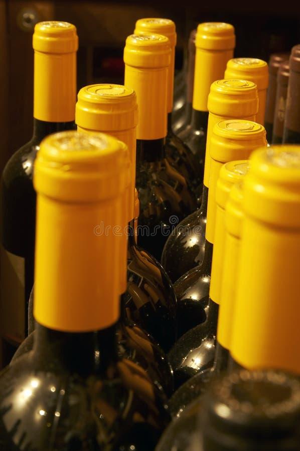 Yellow capsuled bottle necks stock photography