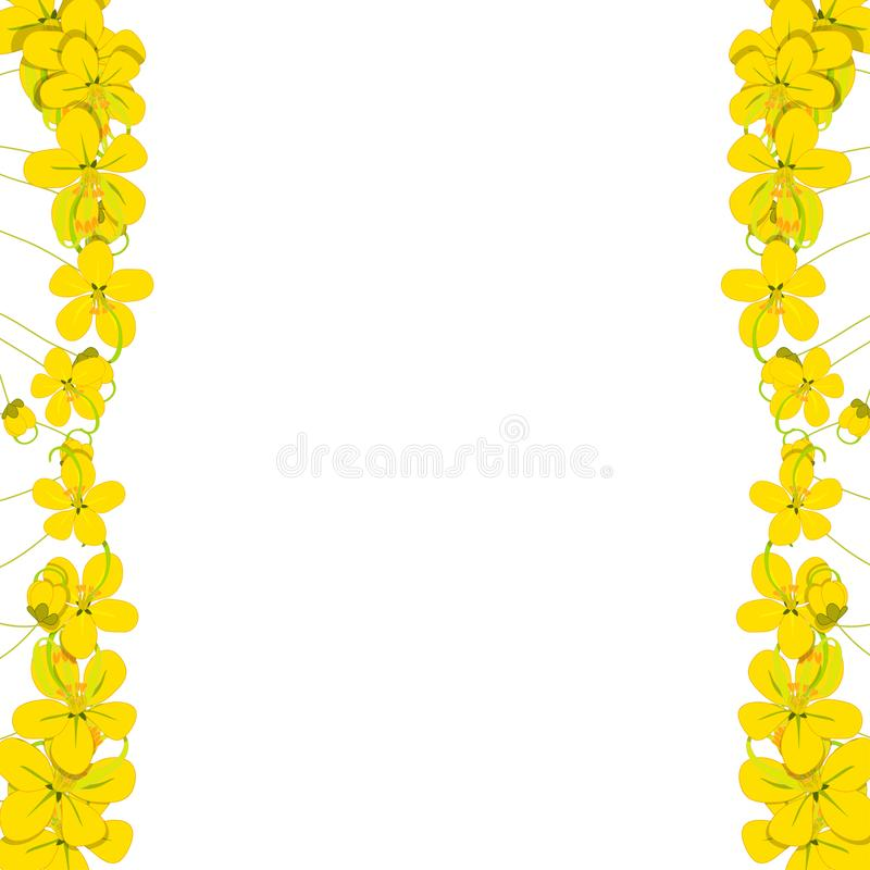 Yellow Cassia Fistula - Golden Shower Flower Border on White Background with copy space. Vector Illustration stock illustration